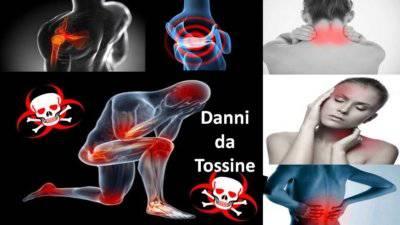elimina la tossiemia - addiotossine
