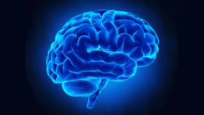 tossine minacciano il cervello - addiotossine